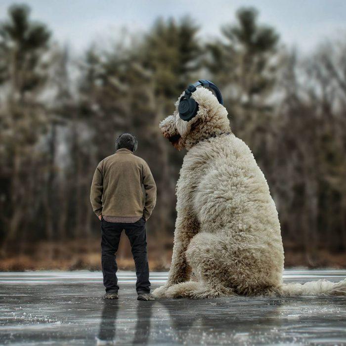 Clein y Juji esperando en el hielo
