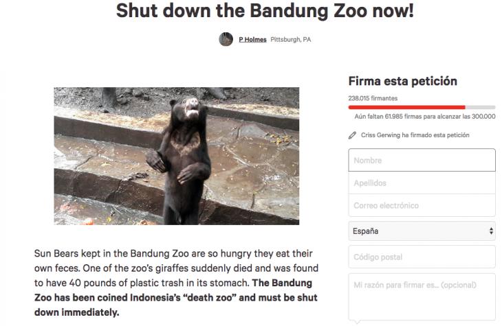 osos peticion