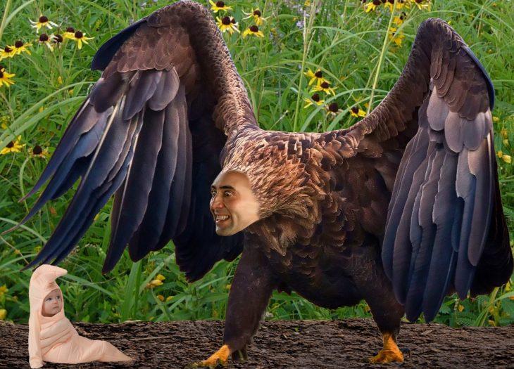 Batalla PS Águila Nicolas Cage