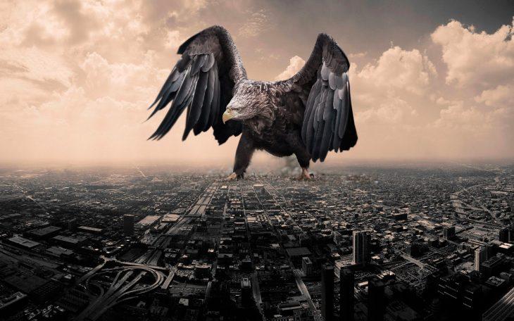 Batalla PS Águila gigante en ciudad