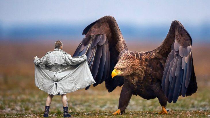 Batalla PS Águila nude