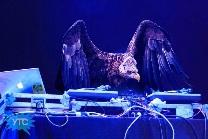 Batalla PS Águila DJ