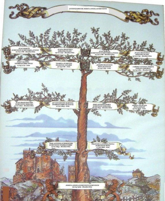 arbol genalogico