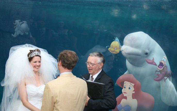 ballena beluga sirenita