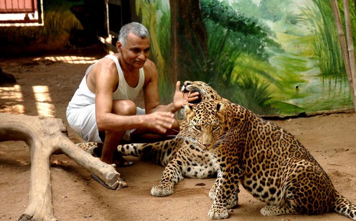 Dr. Pakash y puma mordiendo su mano