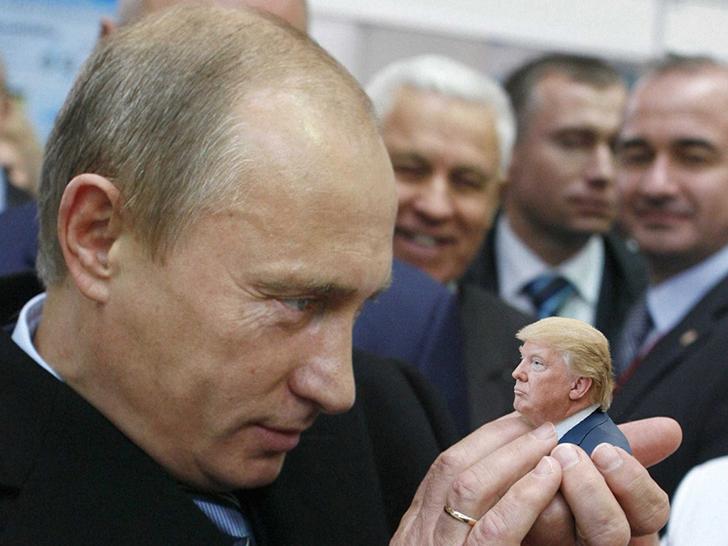 Tiny Trumps Putin manos