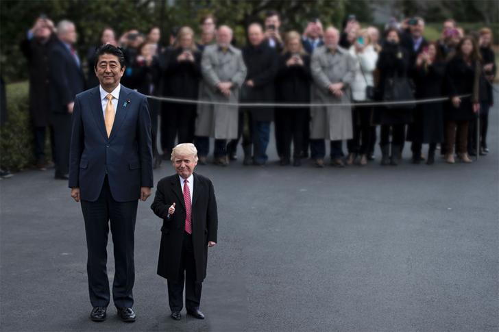 Tiny Trumps foto
