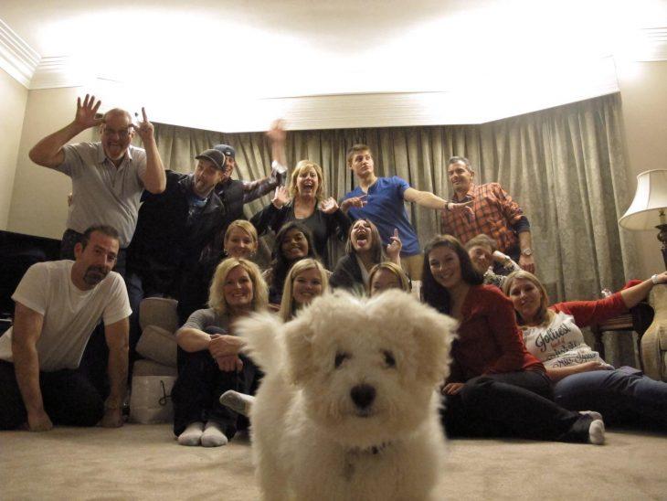 perro en el centro