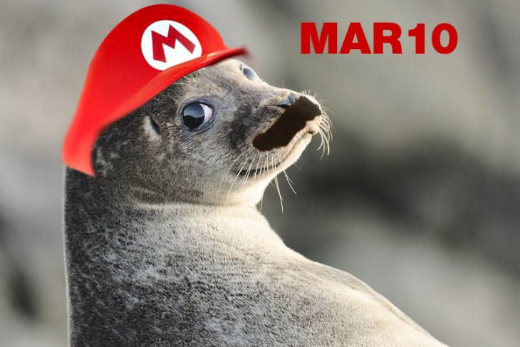 foca mario