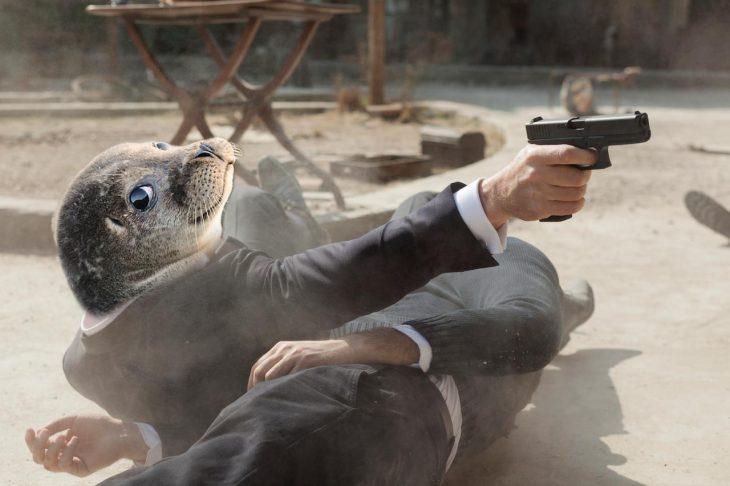 foca 007
