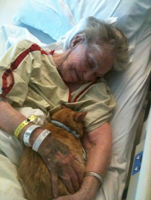 Mujer enferma con gato