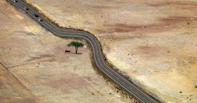 15 ejemplos que muestran cómo convivir con la naturaleza