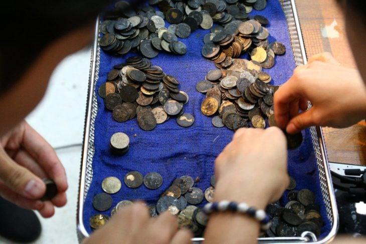 Osin tortuga monedas