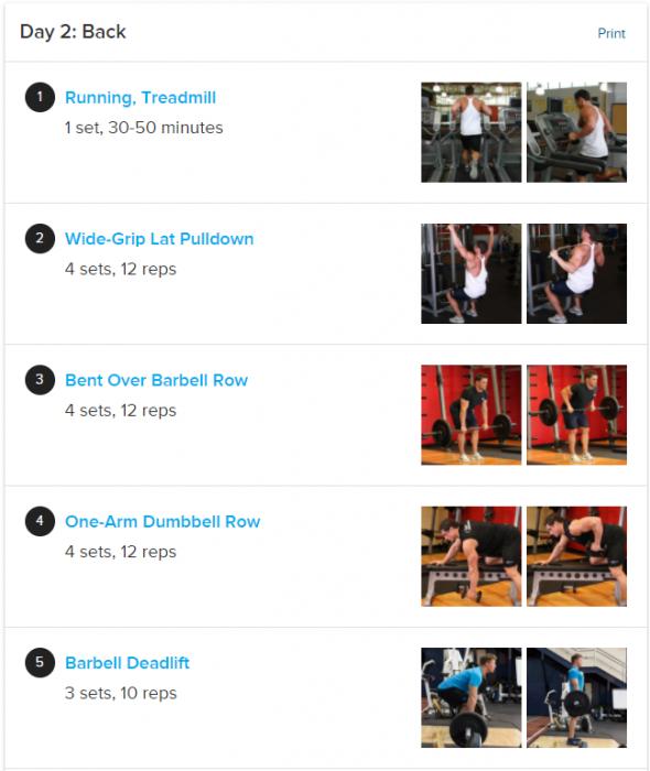 dia 2 ejercicio