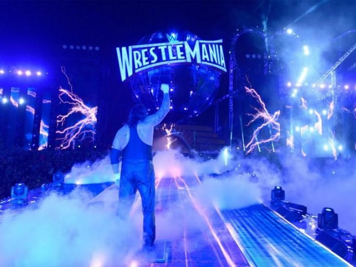 Undertaker Wrestlemania 33