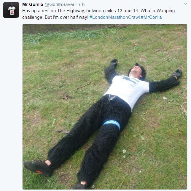 Mr. gorilla twit 3