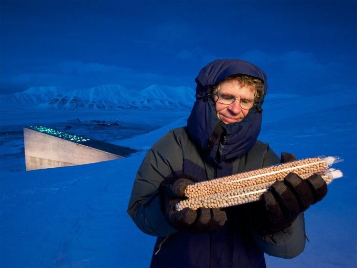 Conservador de semillas en Svalbard