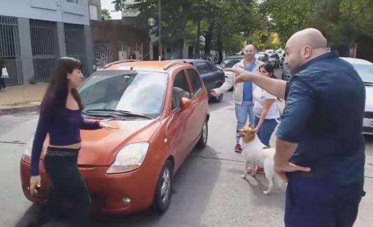Subió perro al auto