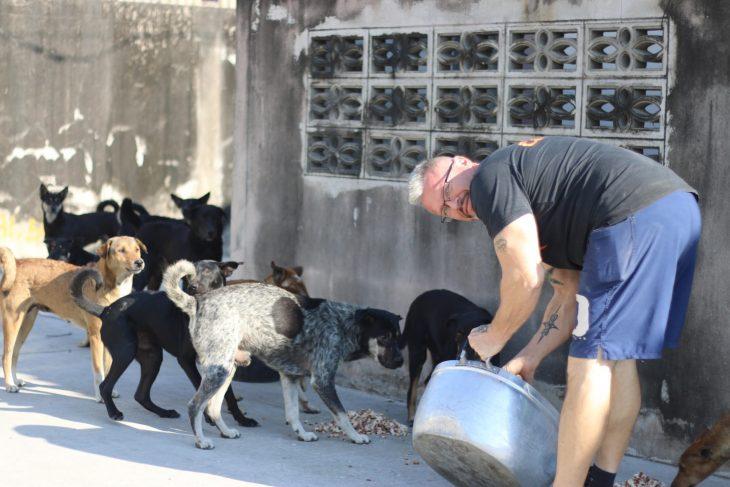 Baines alimenta perros en Tailandia 2