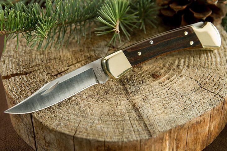 Buck Knives Buck 110 Famous Folding Hunter Knife