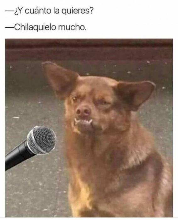 el chilaquil