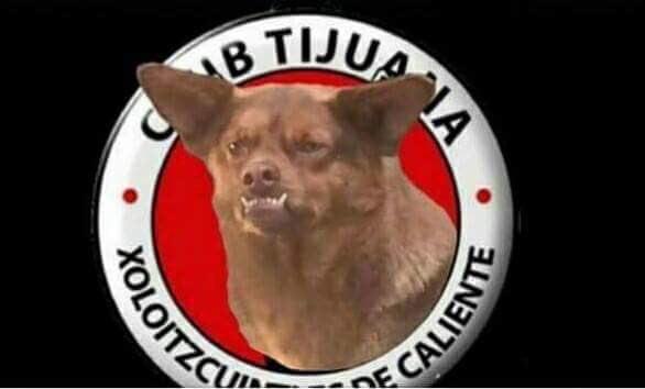 A lo perrito con la flaca chilena 2 - 1 part 10