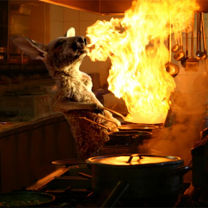 canguro chef