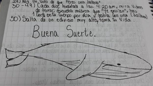 ballena azul retis
