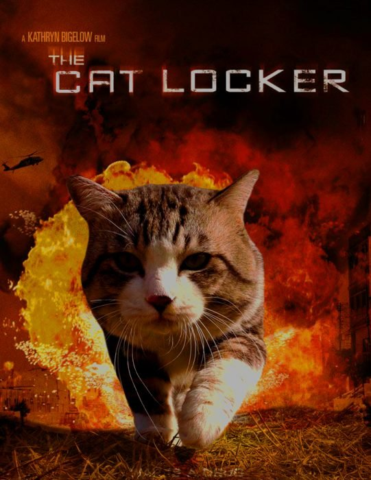 cat locker