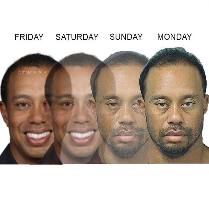meme tiger woods