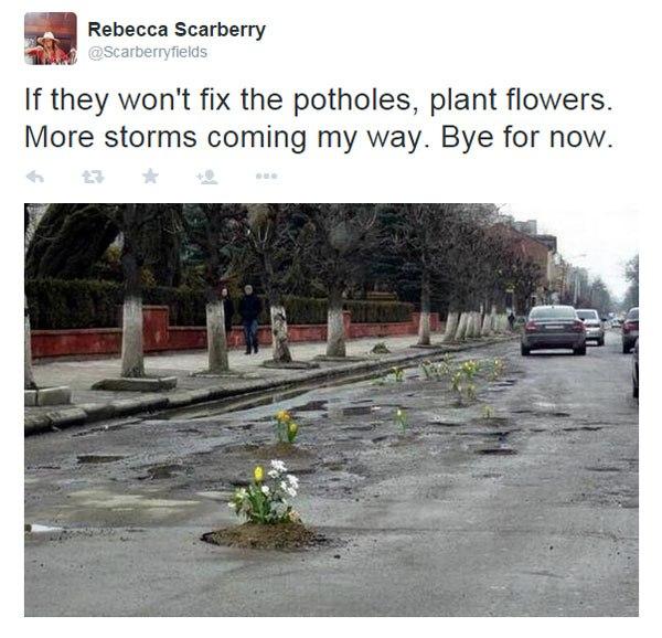 plantas agujeros
