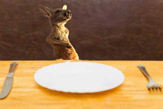 canguro mesa