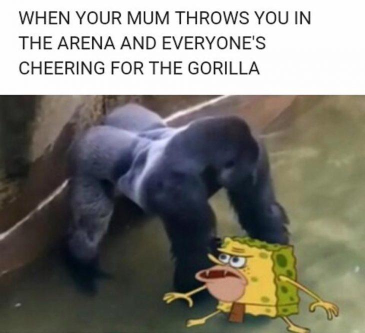 meme harambe