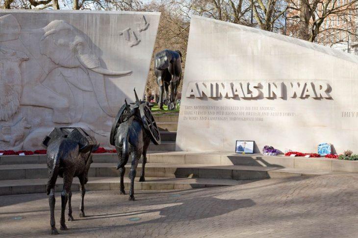 memorial animals in war england