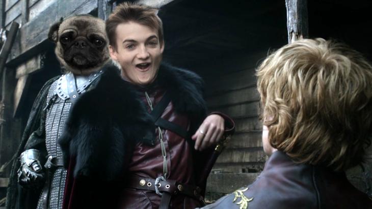 Jack Gleeson Pug meme King Joffrey 13