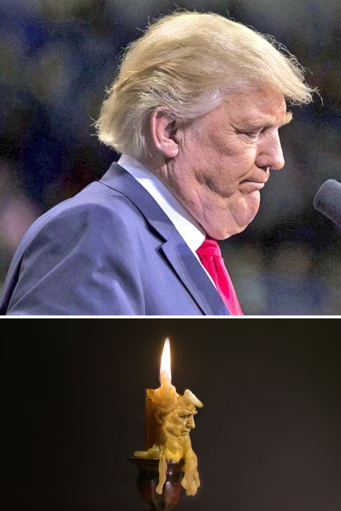 trump vela