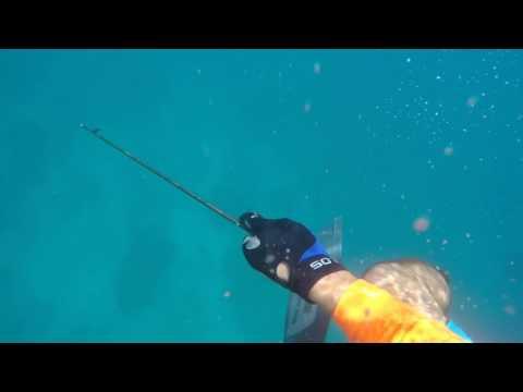 buzo de pesca submarina