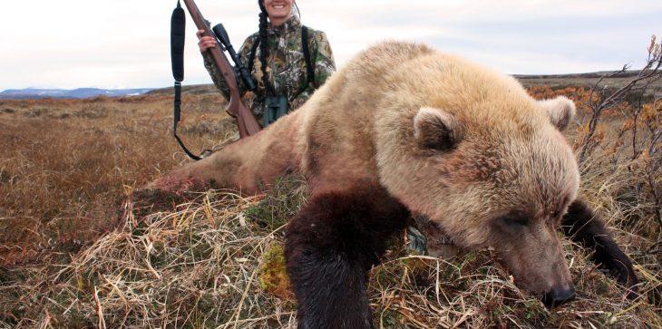 Oso caza