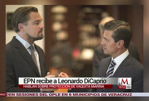 Memes Peña Nieto y DiCaprio
