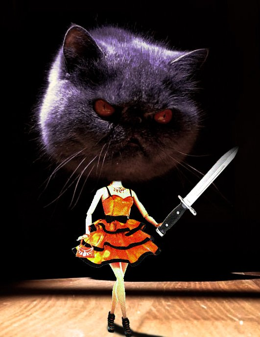 evil cat guerra de photoshop 19