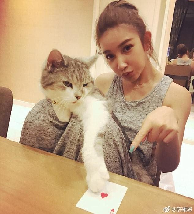 Sharon Hsu con gato