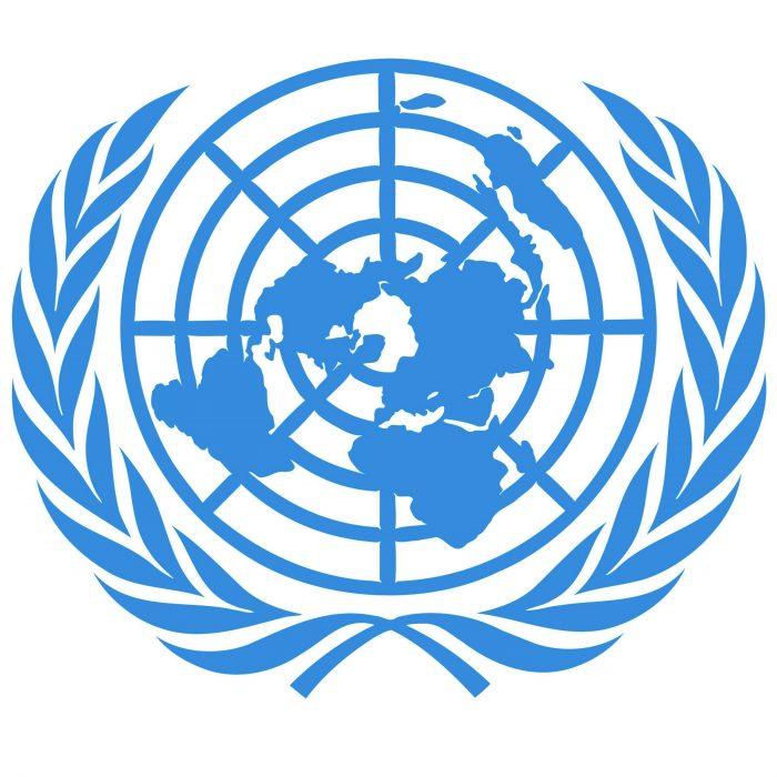 Bandera de las naciones unidas terraplanistas