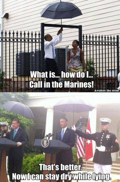 paraguas marinos