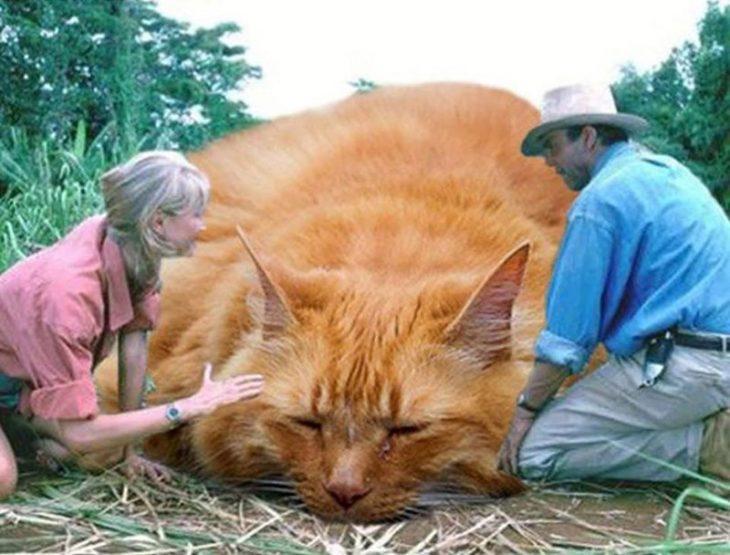 gatos en jurassic park