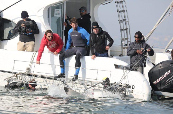 Phelps nadando con tiburones