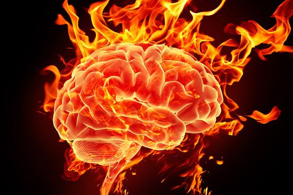 estres quema el cerebro
