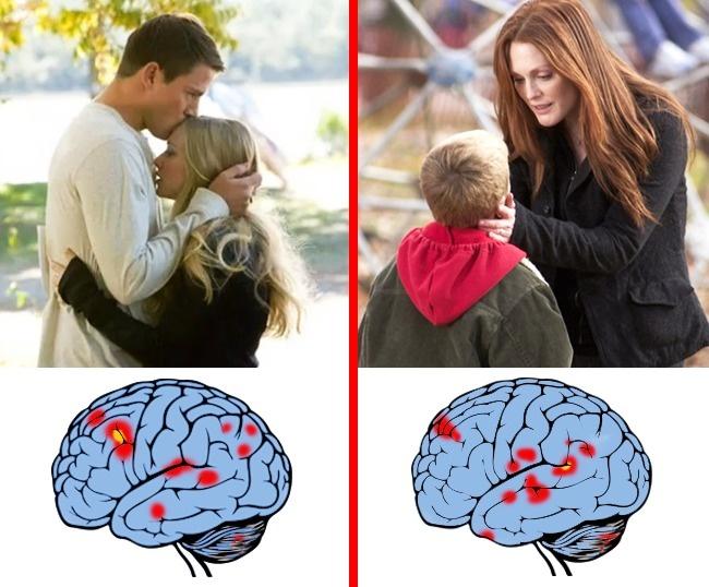 el amor maternal y el romántico cerebro