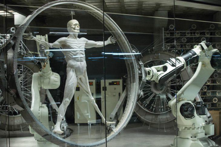 robots musculos
