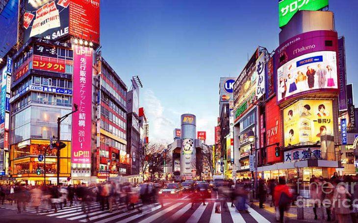japón 2050