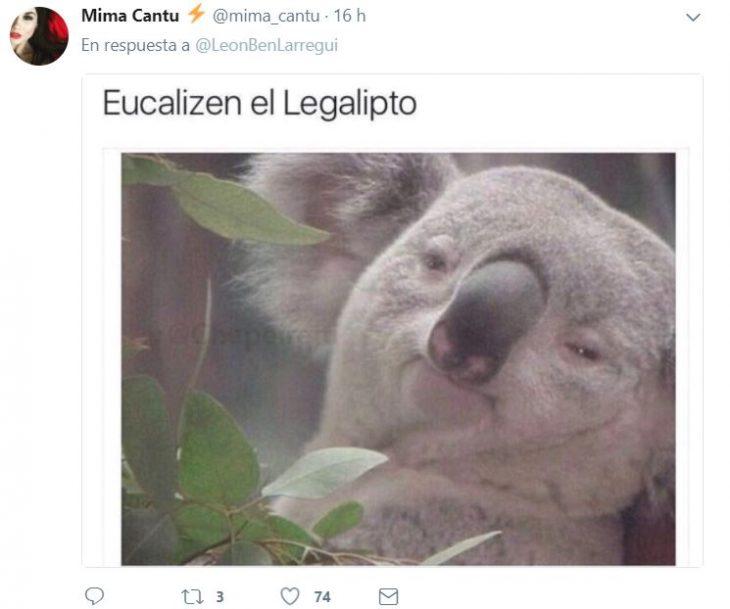 leon larregui mexico es el futuro 9